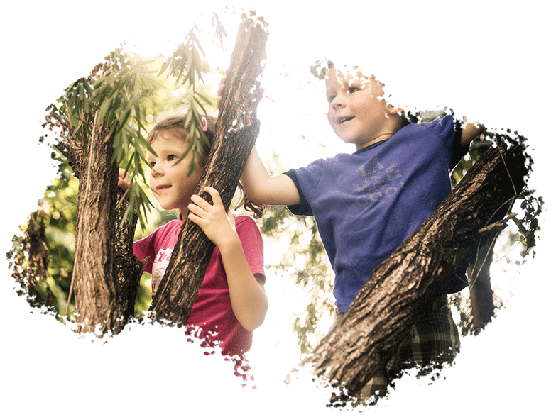 Family kids photography of 2 young children outdoors between tree branches